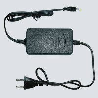 PS-SECURITY 12V-2AD